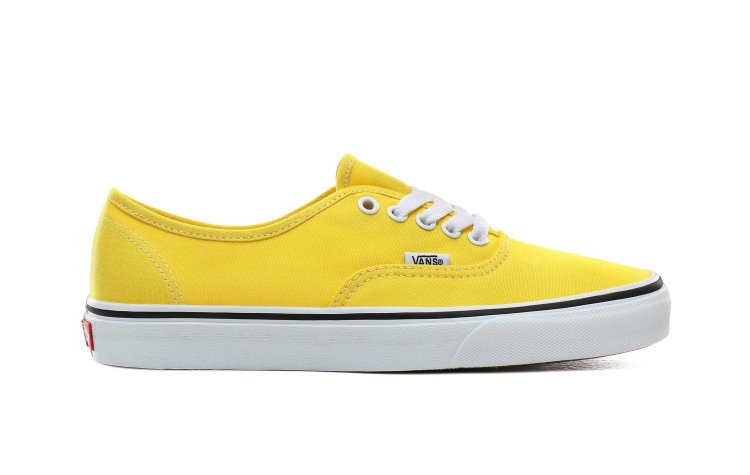 VANS Authentic (VN0A2Z5IFSX)